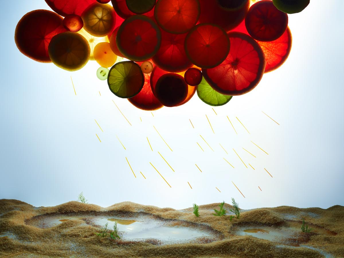 Pluie d'agrumes