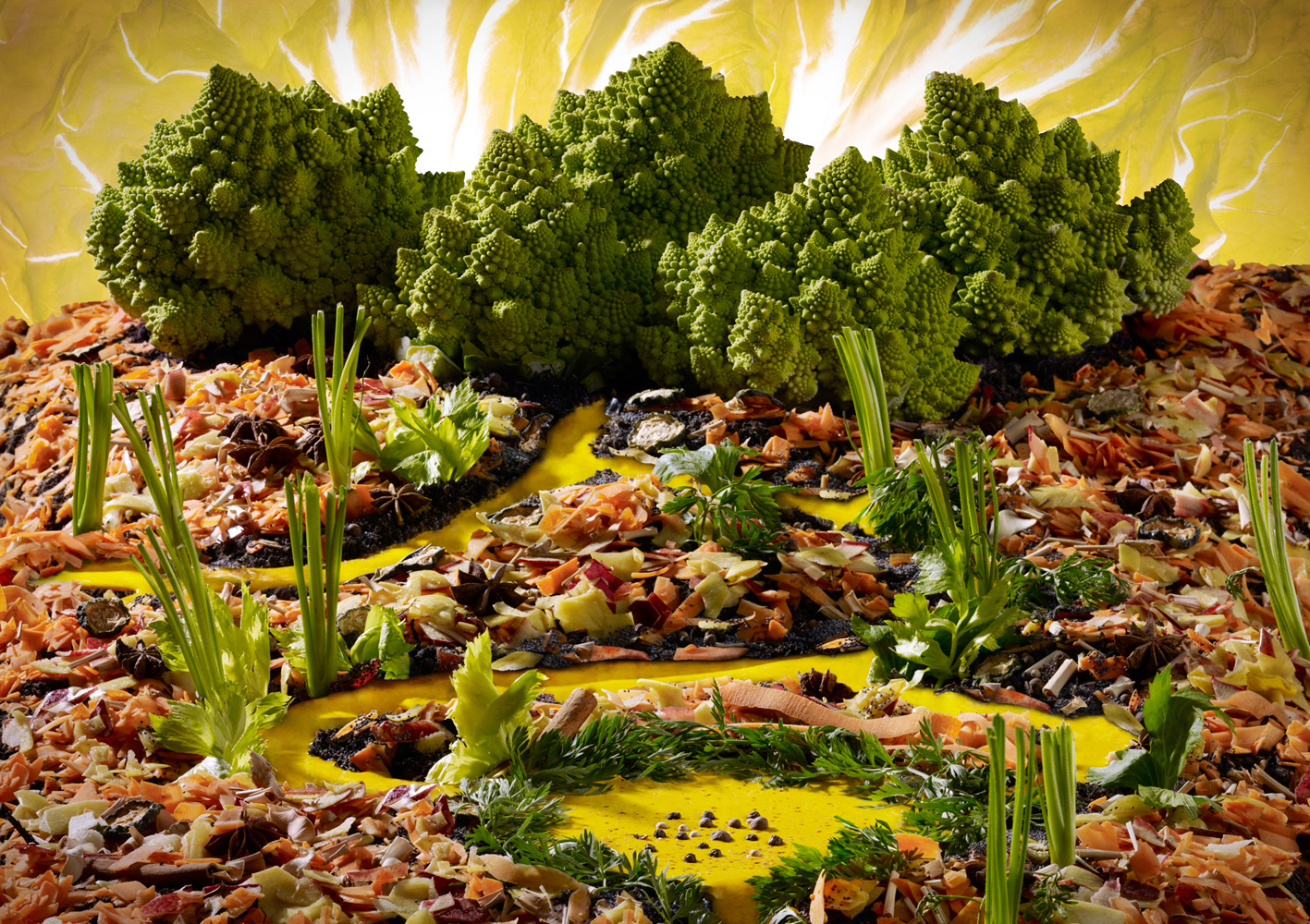 Paysage culinaire – FIPC 2011