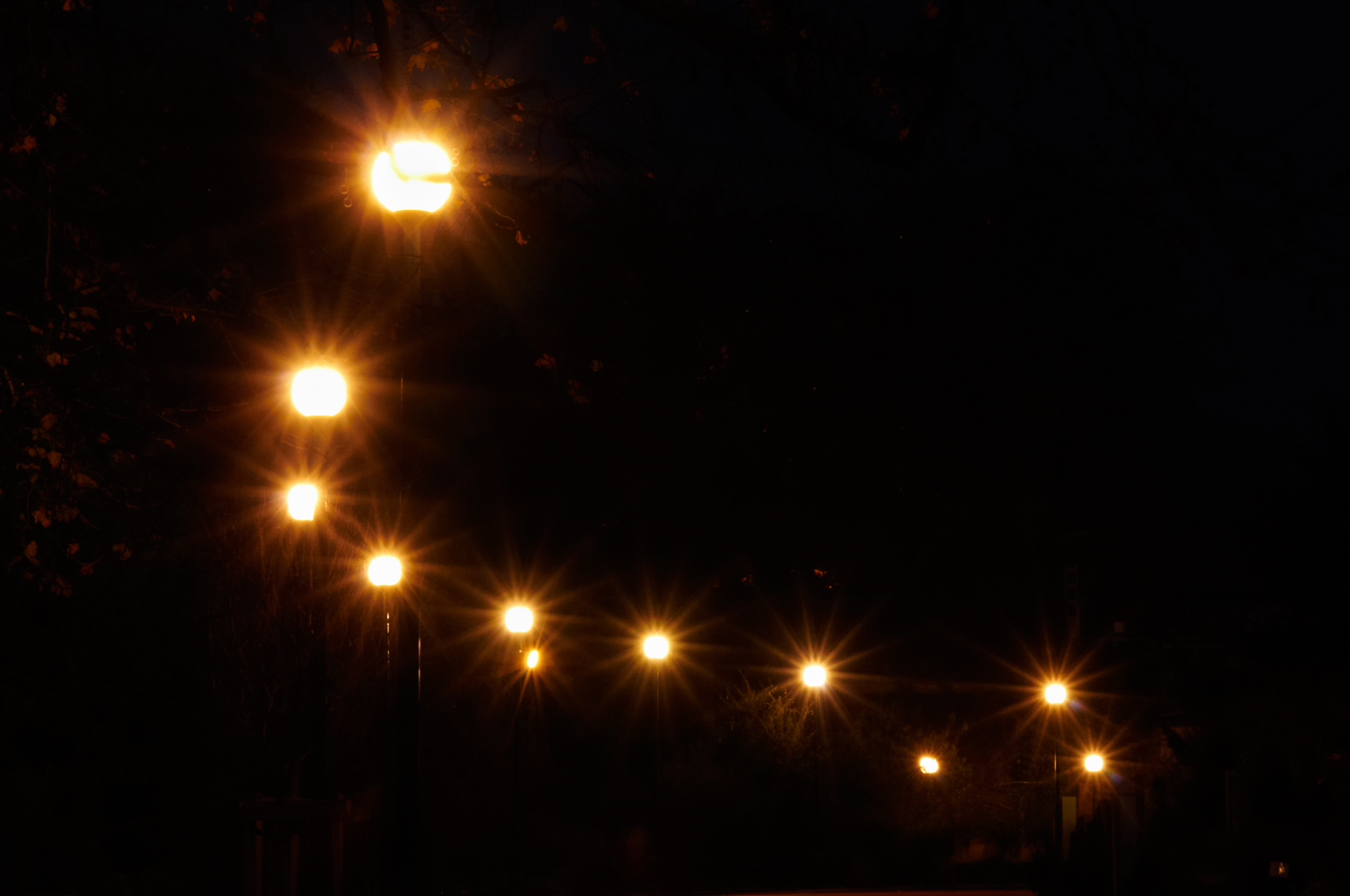 Night Lights – lumières nocturnes