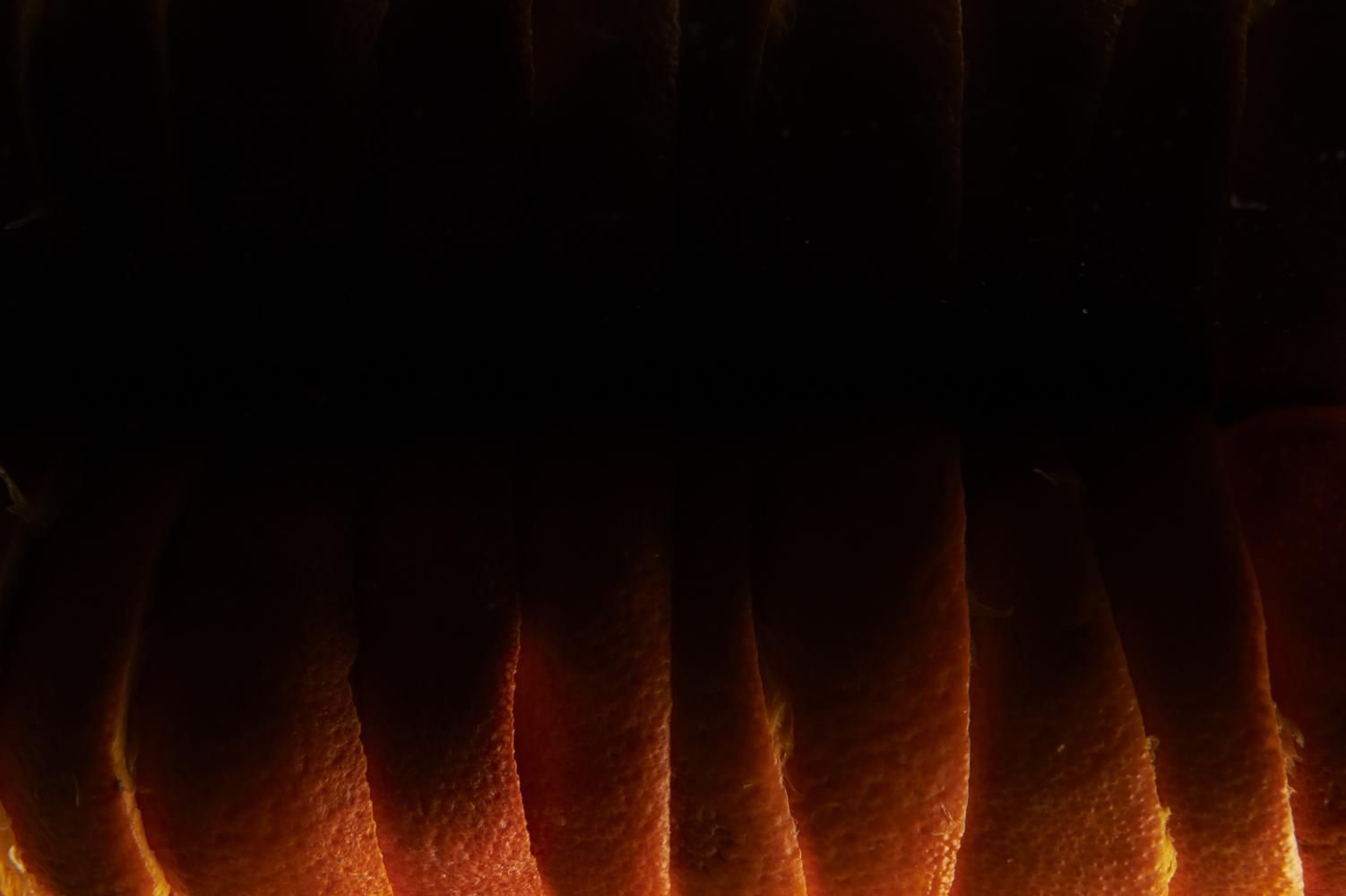 feu-d-oranges